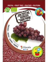 Parra Flame Seedless M-25 ECO