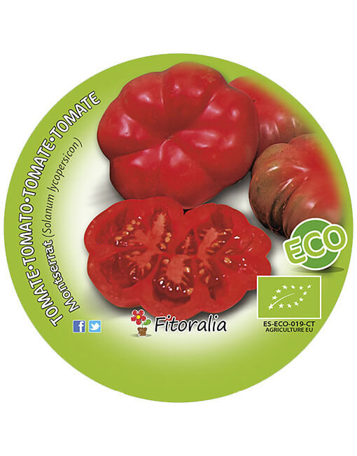 Tomate Montserrat ECO M-10,5