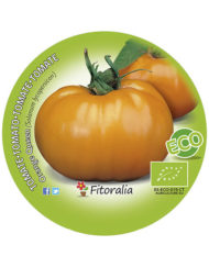 Tomate Orange Queen ECO M-10,5