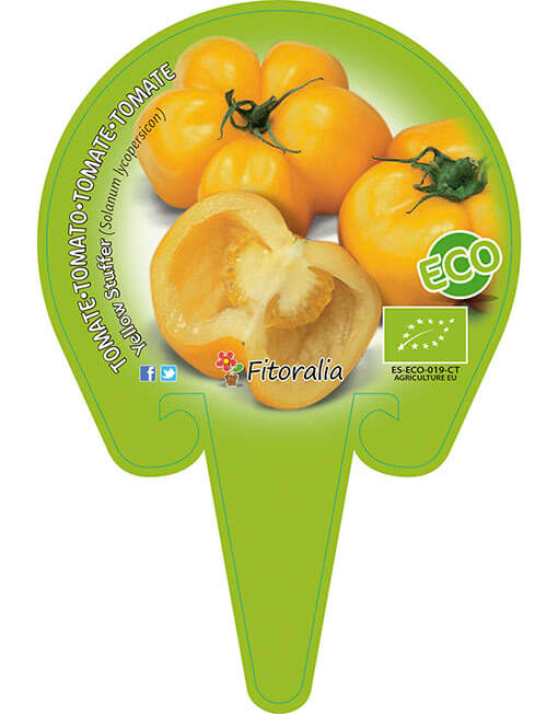 Tomate Yellow Stuffer ECO M-10,5