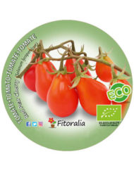 Tomate Red Pear Cherry ECO M-10,5
