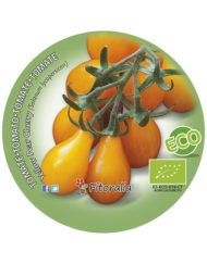 Tomate Yellow Pear Cherry ECO M-10,5