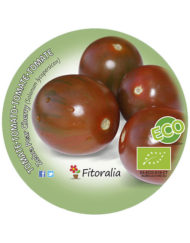Tomate Zebra Pear Cherry ECO M-10,5
